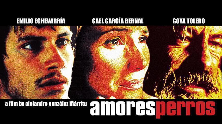 アモーレスペロス